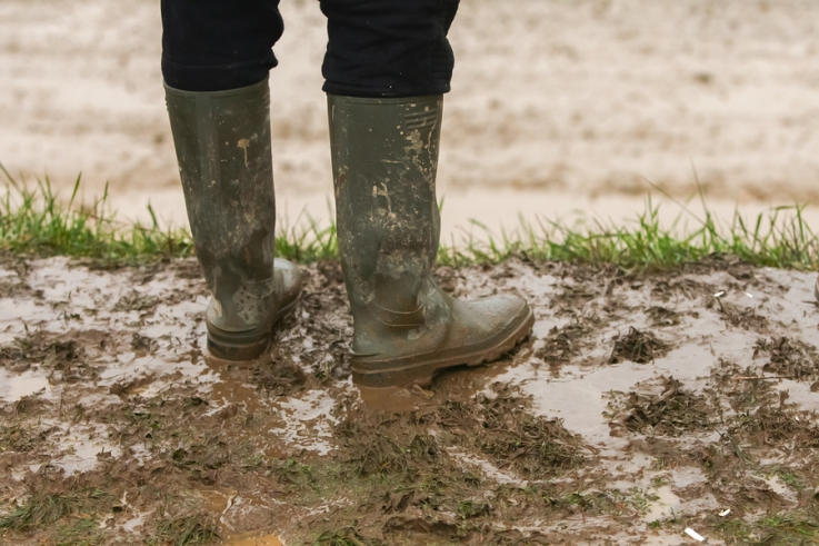 Prevent Planting: Clear as the mud on my boots